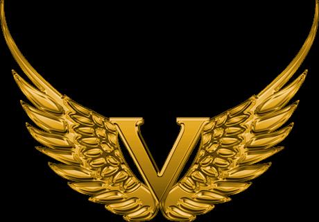 V-Group